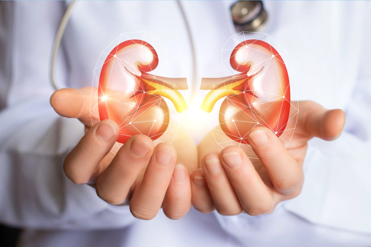 Renal Nutrition Guidelines: The RDN's Role in Stage Management of CKD - Webinar 2