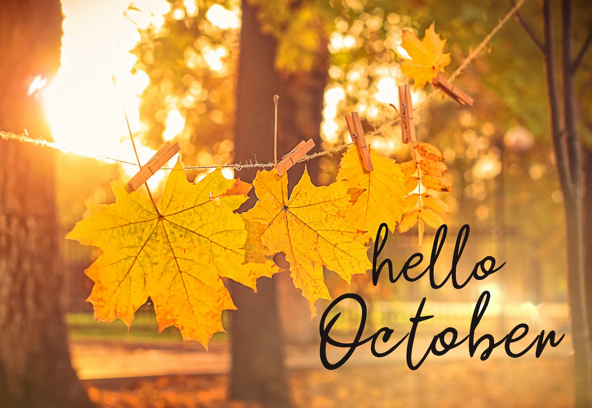 Fall Leaves - Hello October