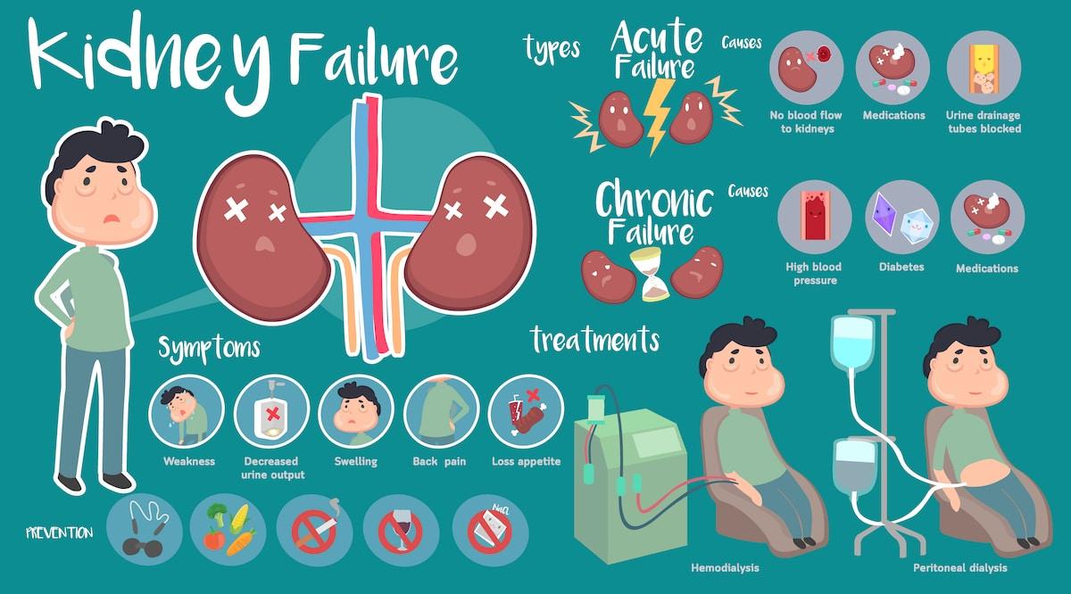 Kidney failure symptoms and treatment