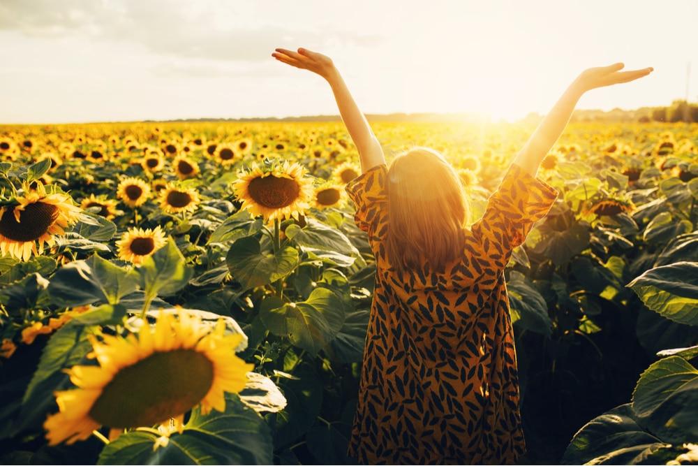 Joyful woman walking amongst sunflowers